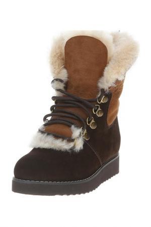 Ботинки PUSHA. Цвет: коричневый