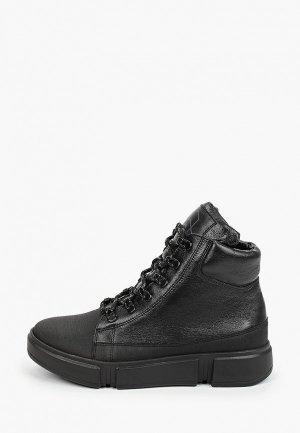Ботинки Shagovita. Цвет: черный