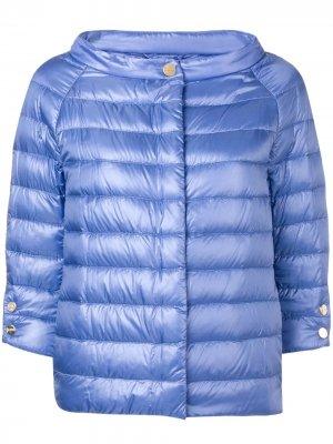 Дутая куртка с рукавами три четверти Herno. Цвет: фиолетовый