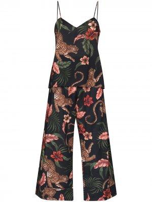 Пижама Soleia с леопардовым принтом Desmond & Dempsey. Цвет: синий