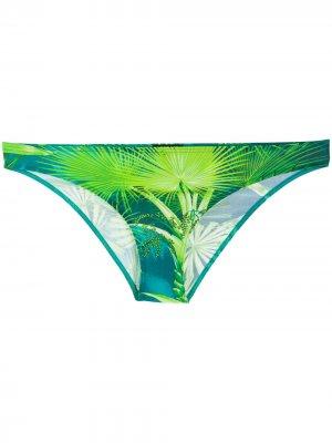 Плавки бикини с принтом Versace. Цвет: зеленый