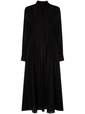 Платье-рубашка Thalon длины миди Three Graces. Цвет: черный