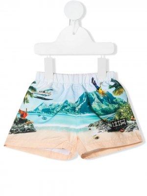 Плавки-шорты Welcome to Hawaii с принтом Molo. Цвет: нейтральные цвета