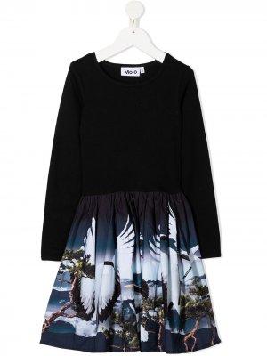 Расклешенное платье с длинными рукавами Molo. Цвет: черный