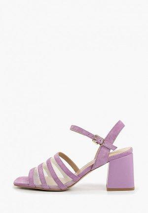 Босоножки Antonio Biaggi. Цвет: фиолетовый