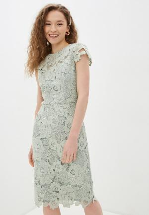 Платье Chi London. Цвет: зеленый