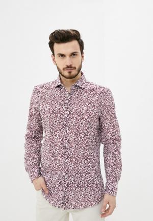 Рубашка Strellson. Цвет: розовый