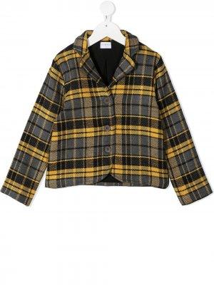 Пиджак в клетку Violeta E Federico. Цвет: желтый