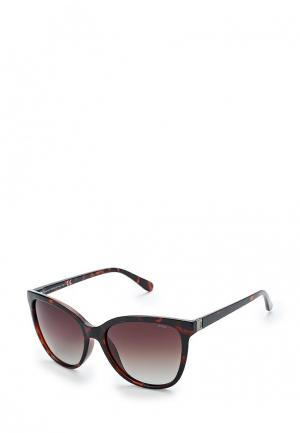 Очки солнцезащитные Invu. Цвет: коричневый
