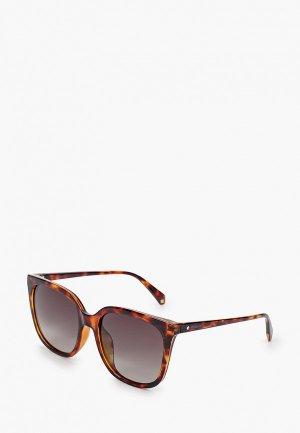 Очки солнцезащитные Polaroid. Цвет: коричневый