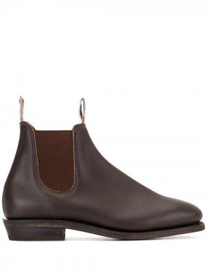 Ботинки челси Adelaide R.M.Williams. Цвет: коричневый