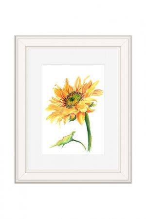 Картина Подсолнух: ранний OLGA GLAZUNOVA. Цвет: желтый