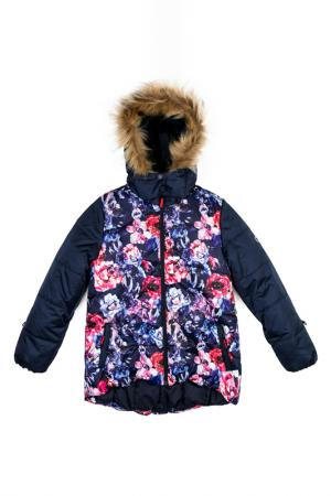 Куртка Scool S'cool. Цвет: мультицвет