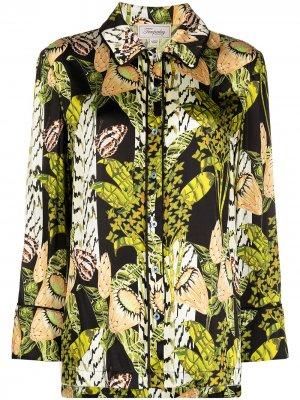 Пижамная рубашка Elpis с принтом Temperley London. Цвет: зеленый