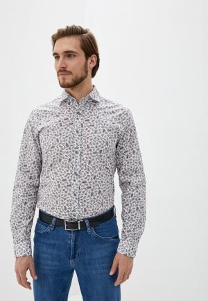 Рубашка Strellson. Цвет: фиолетовый
