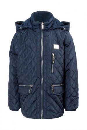 Куртка PINETTI. Цвет: синий