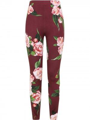 Легинсы с цветочным принтом Dolce & Gabbana. Цвет: красный