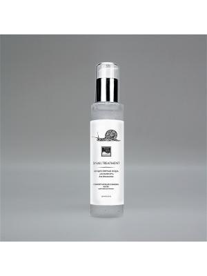 Мицеллярная вода комфорт для демакияжа Beauty Style. Цвет: серый